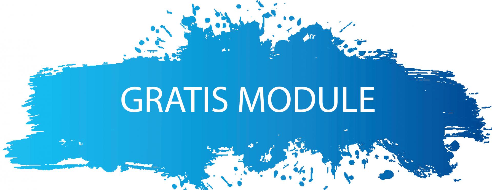 Gratis factureren met de gratis module Spitsfactuur
