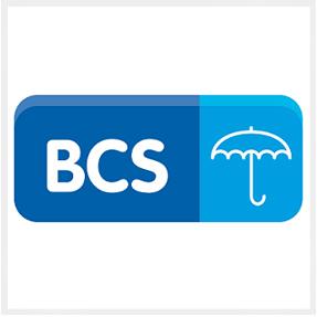 Logo Polaris BCS