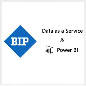 Logo BI Partners