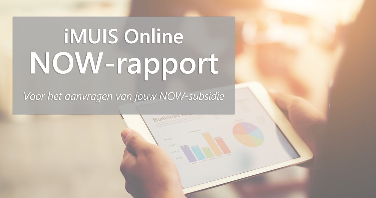 now-rapport-imuis-online
